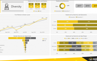 HR Reporting - Dashboard Diversity